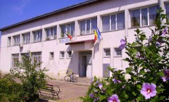 Biblioteca Stefanesti